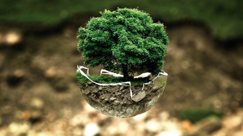 Luomu