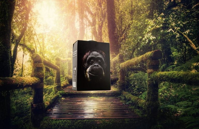 Apinaviini viidakossa