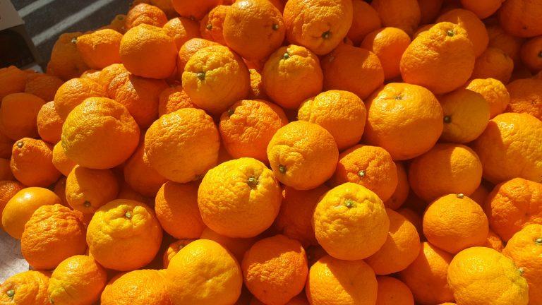 Appelsiinit