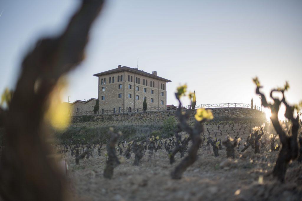 Bodega-Winery close up