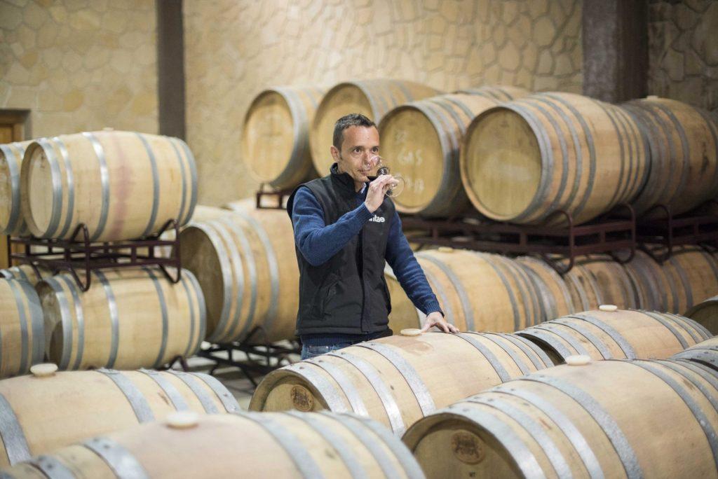 Bodega-Winery tasting from casks